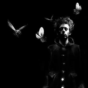 Le Soir des Monstres • Etienne Saglio / Monstre(s) # Les 3 Chênes