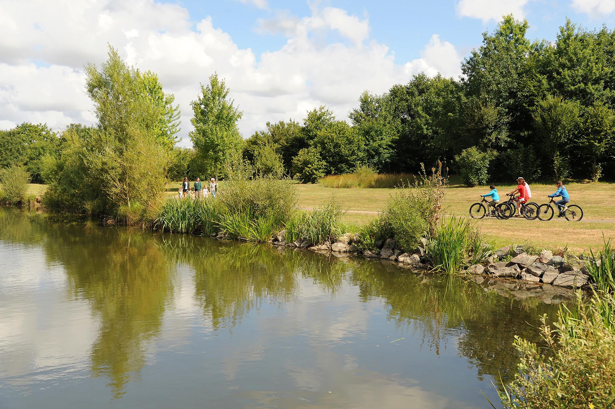 Location vélos