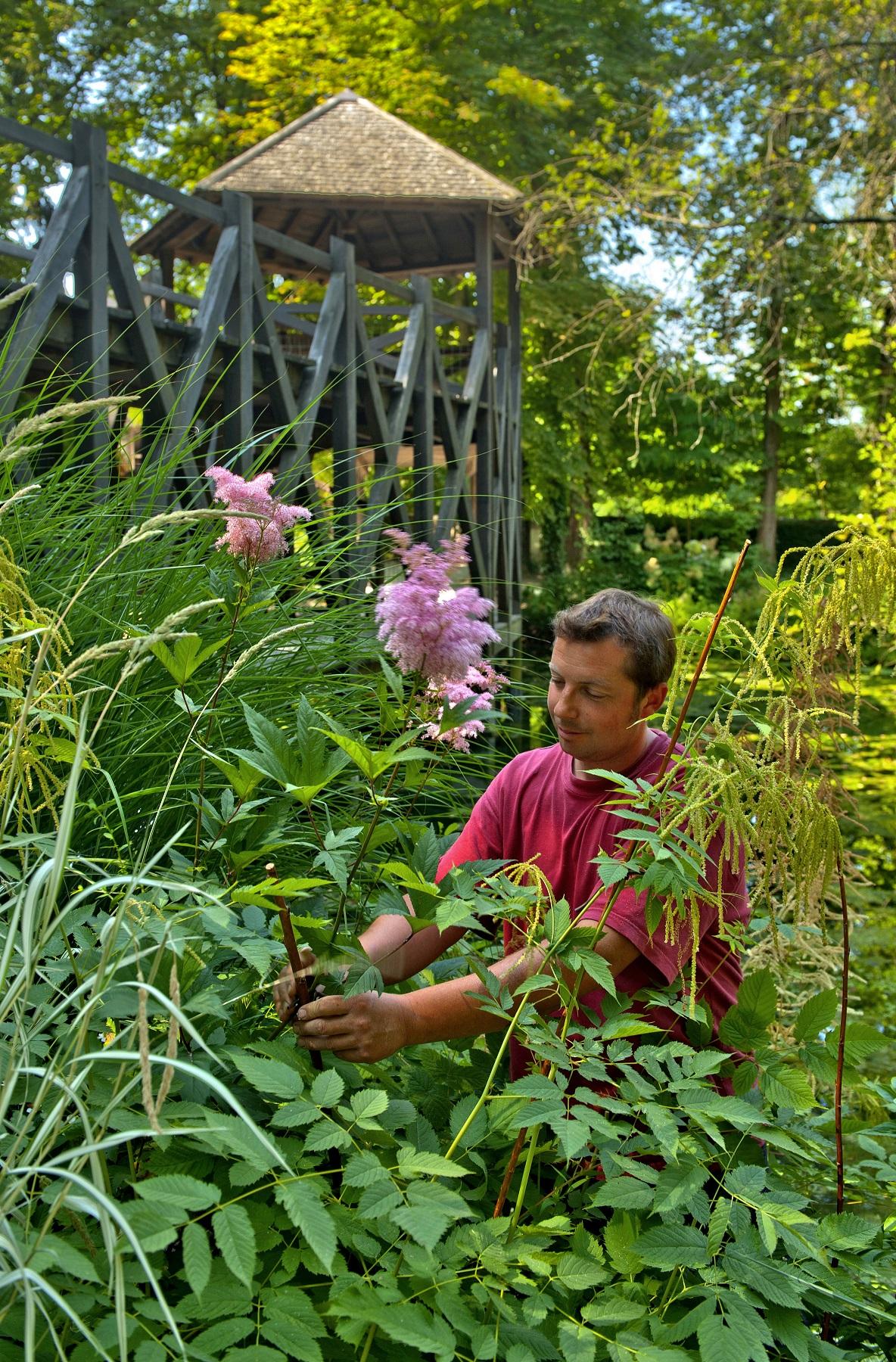 Rendez vous aux jardins au ch teau du clos luce for Rdv aux jardins