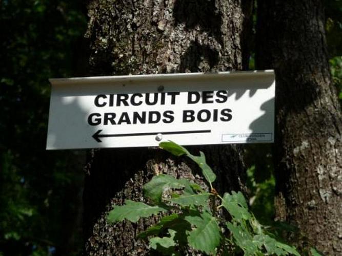 Circuit des Grands Bois
