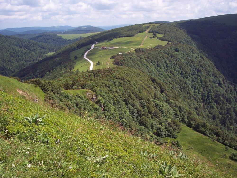 Circuit n°9 : Gérardmer - Col de la Schlucht