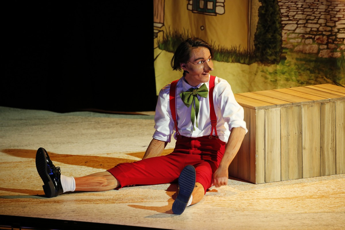 Troyes : Pinocchio, le conte musical