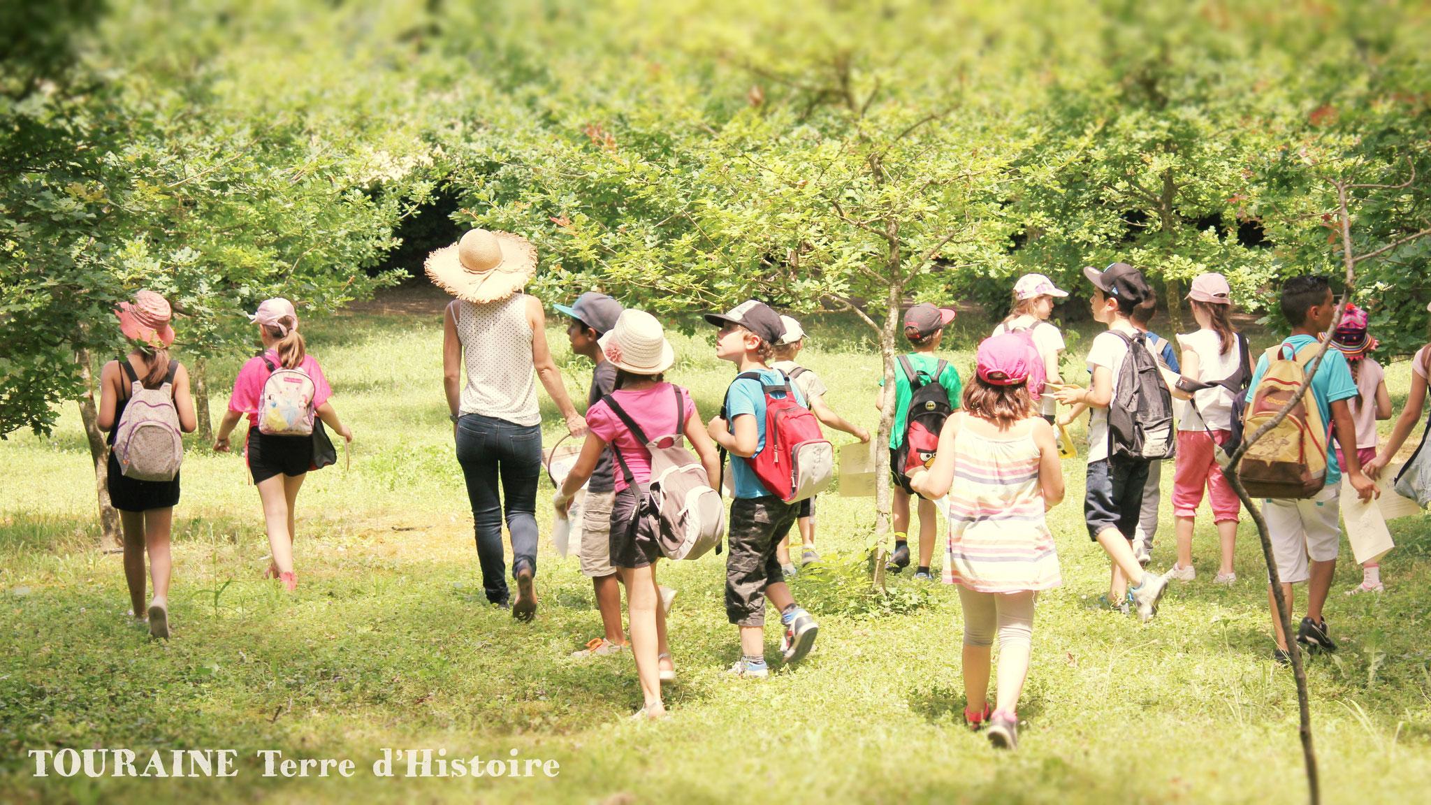Le jardin botanique de tours office de tourisme du pays for Le jardin botanique camping