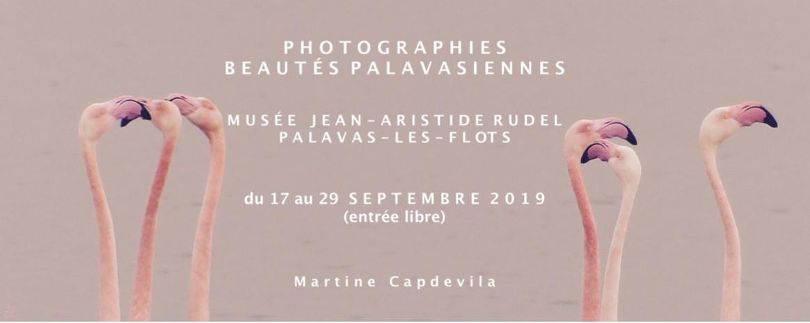 Exposition de Martine CAPDEVILA
