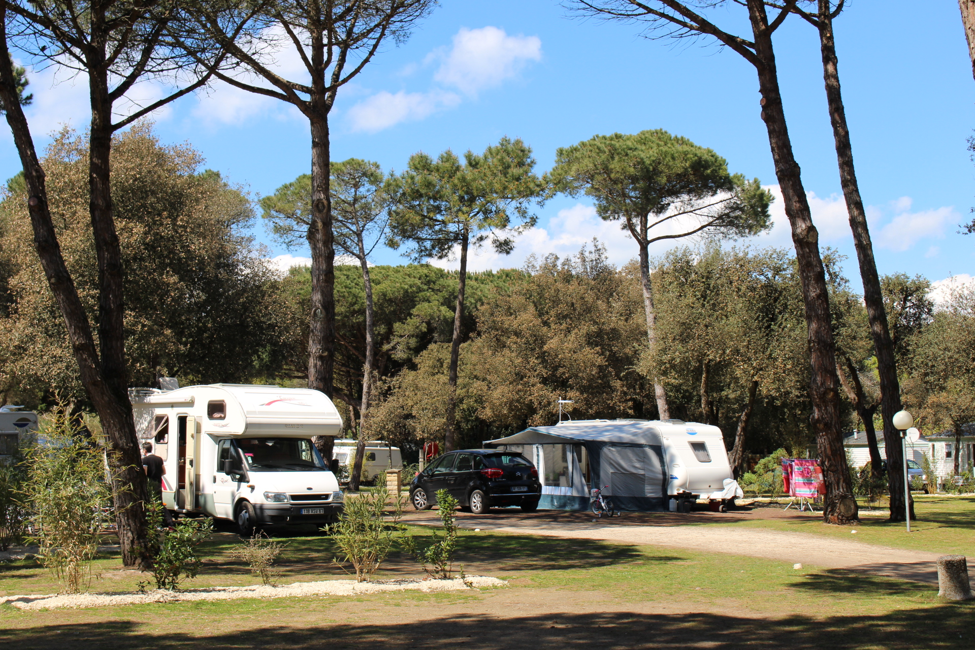La Grainetière Ile De Ré Avis camping la grainetiere - terrain de camping classé - la